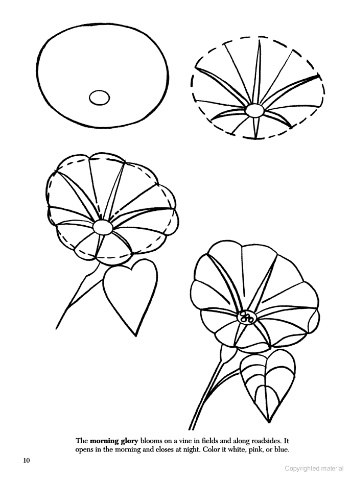 how to draw flowers how to draw a rose flower drawing tutorials realistic to flowers draw how