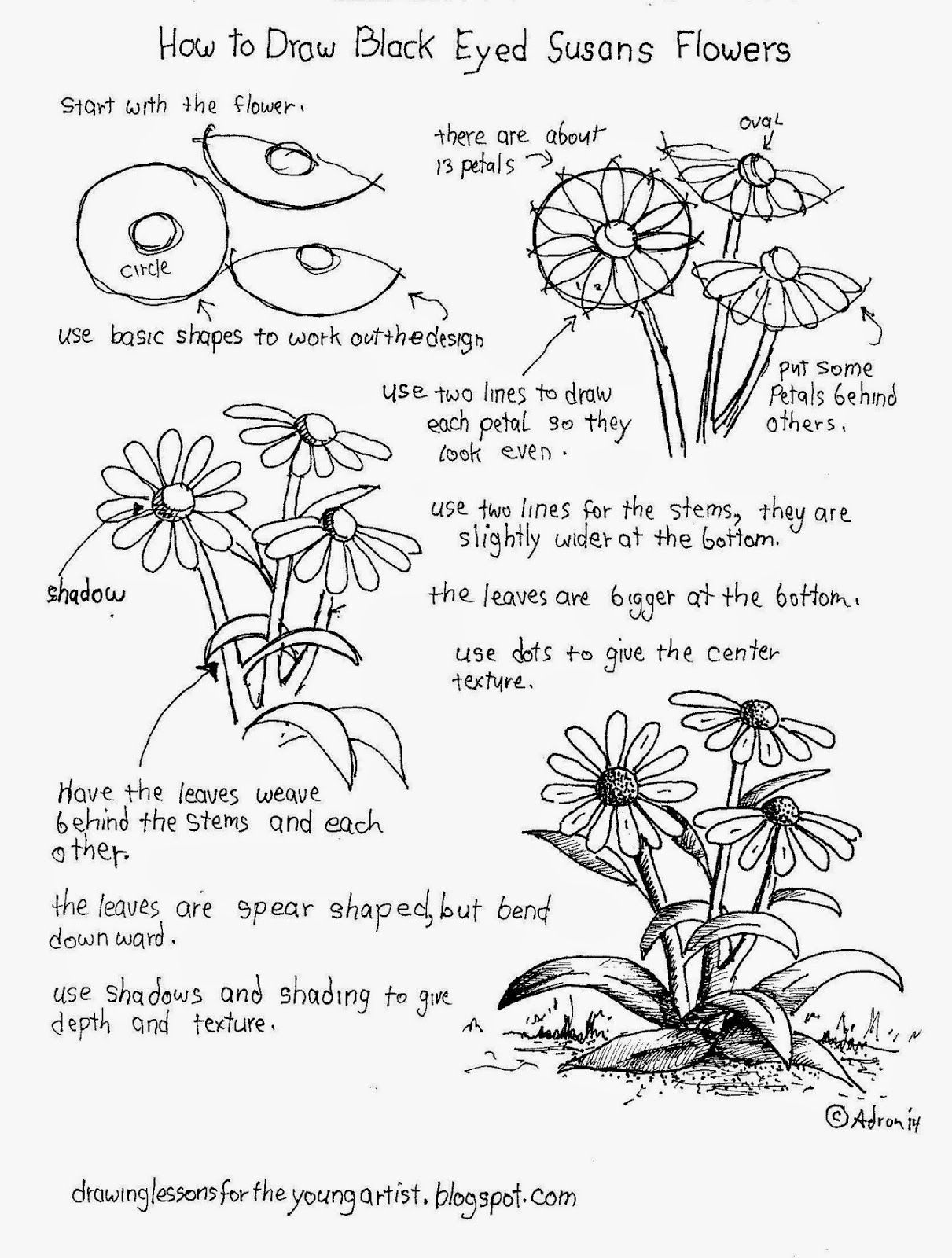 how to draw flowers how to draw flowers easy flower drawings flower drawing flowers how to draw