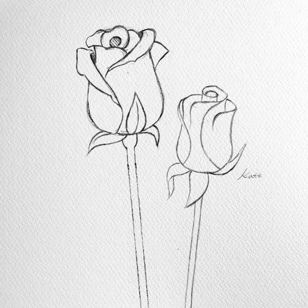 how to draw flowers how to draw flowers step by step for beginners flower flowers to draw how