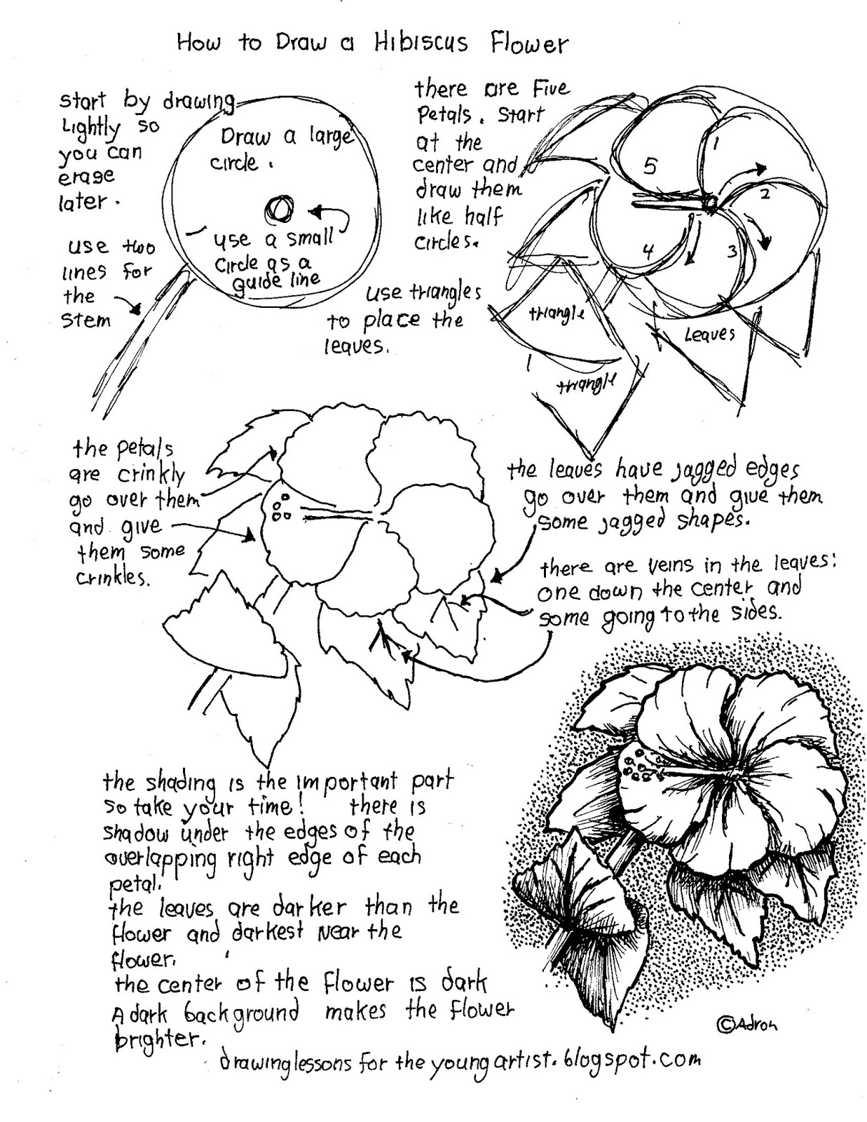 how to draw flowers how to draw worksheets for the young artist printable how draw how to flowers