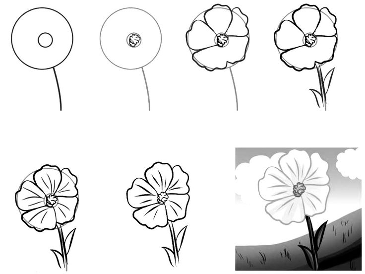 how to draw flowers pin on delicate doodleszentangles for me to try to draw flowers how