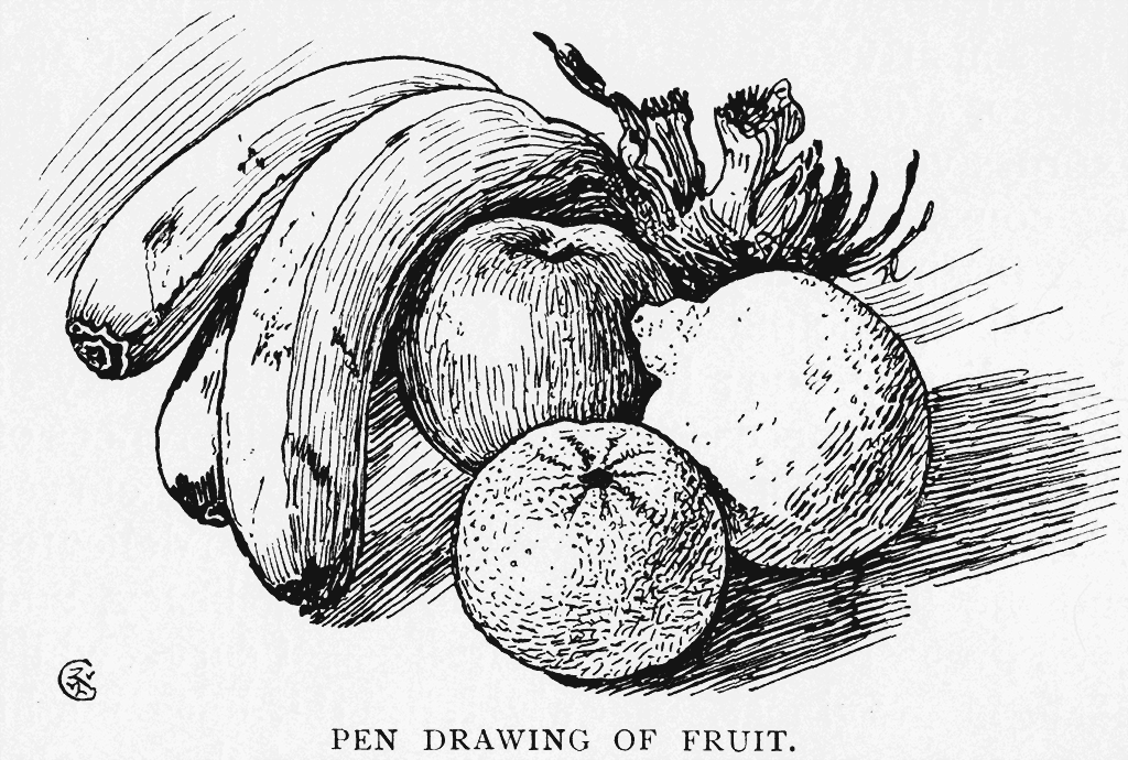 how to draw fruit fruits hand drawing fruits drawing drawings realistic how draw to fruit