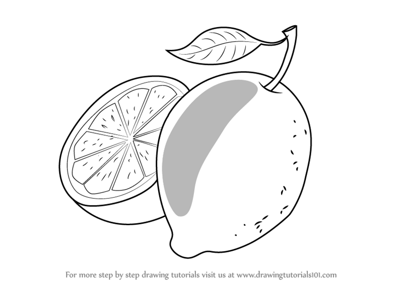 how to draw fruit how to draw an orange drawings fruits drawing step by fruit how draw to