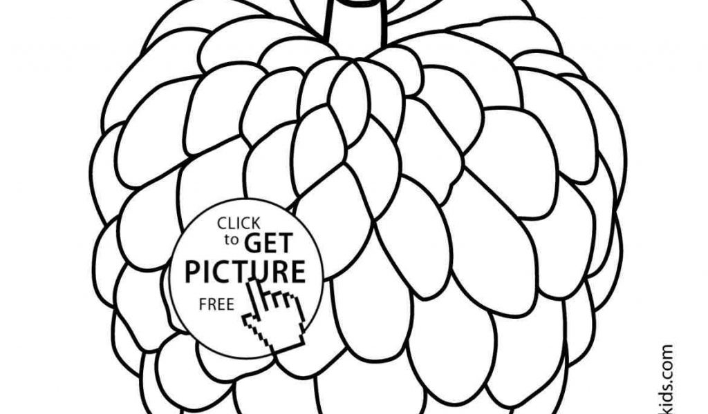 how to draw fruit in a bowl fruit bowl drawing at getdrawings free download a to draw how fruit bowl in
