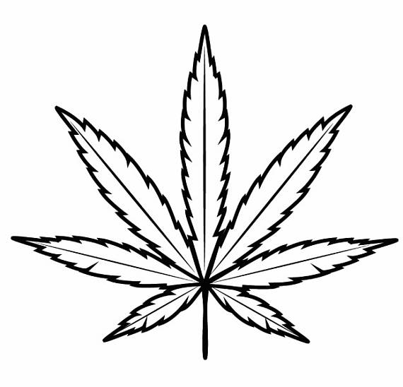 how to draw pot leaf cartoon pot leaf drawing free download on clipartmag how leaf to draw cartoon pot