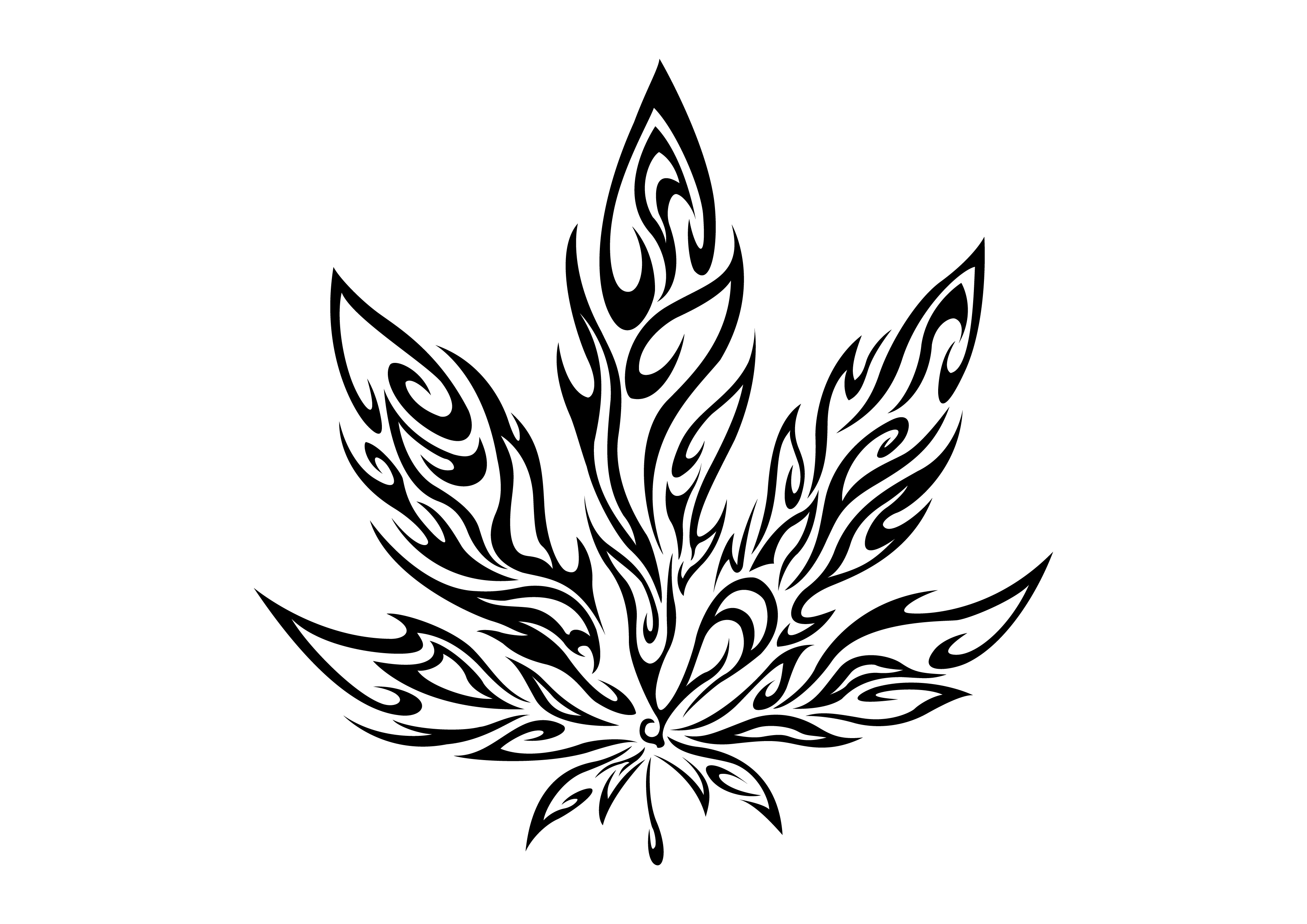 how to draw pot leaf cartoon weed leaf drawing step by step at getdrawings free download cartoon to leaf how pot draw