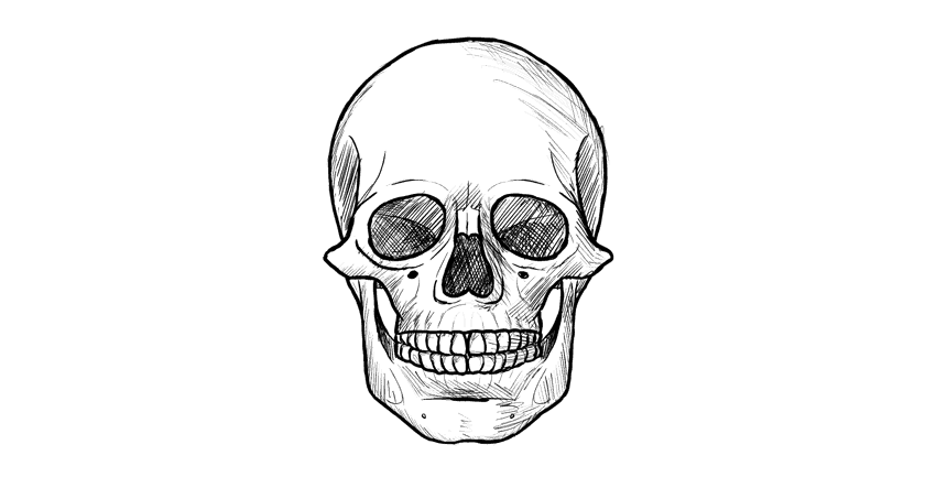 how to draw realistic skulls step by step how to draw a realistic skull human skull step by step by to how step realistic skulls draw step