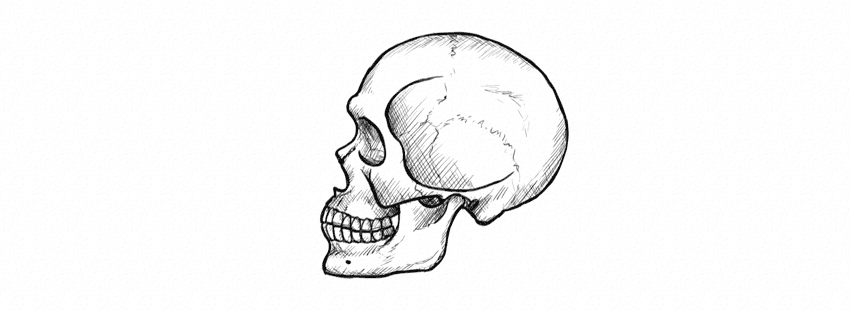 how to draw realistic skulls step by step how to draw a skull in profile step by step step skulls by to how draw realistic step