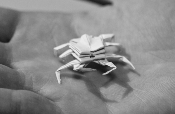 how to make origami crab 38 best images about papercraft on pinterest 2d paper origami how make to crab