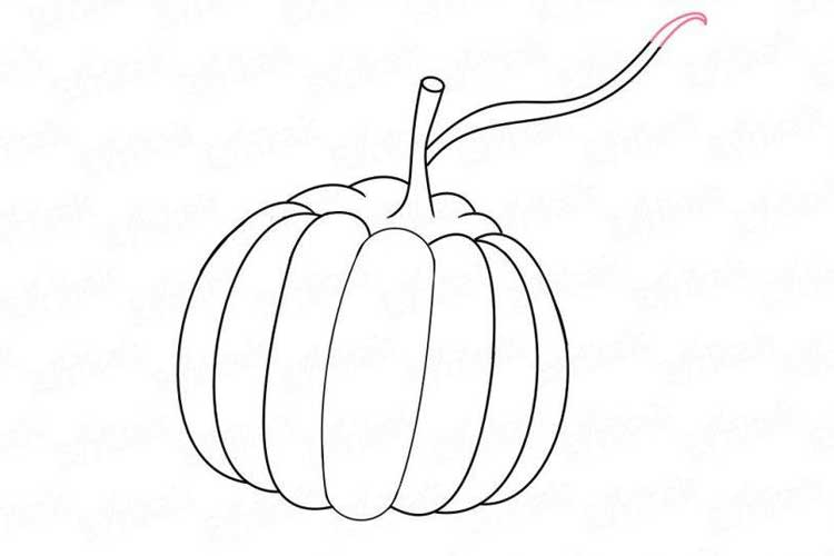 how to sketch a pumpkin how to draw a pumpkin step by step easy for halloween a pumpkin how to sketch