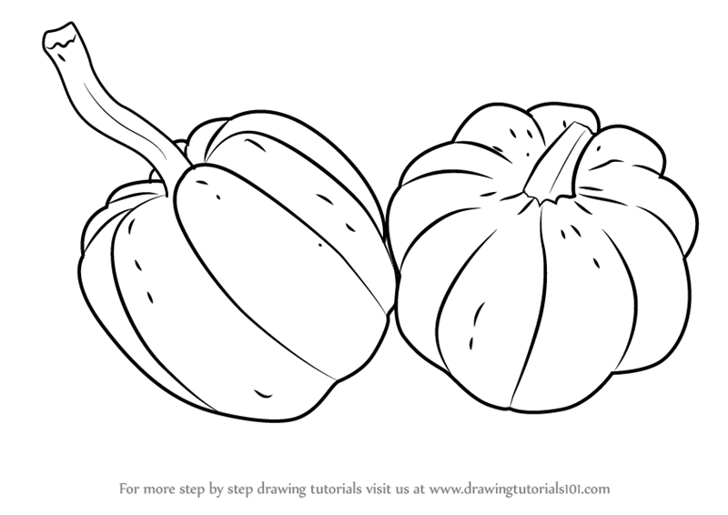 how to sketch a pumpkin learn how to draw a pumpkins fruits step by step to how sketch pumpkin a