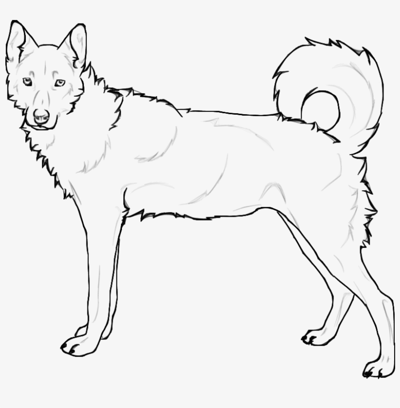 husky dog coloring pages baby puppie coloring pages ferrisquinlanjamal pages husky coloring dog