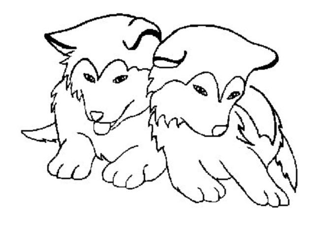 husky dog coloring pages cute baby husky with a bowtie coloring page free pages coloring dog husky