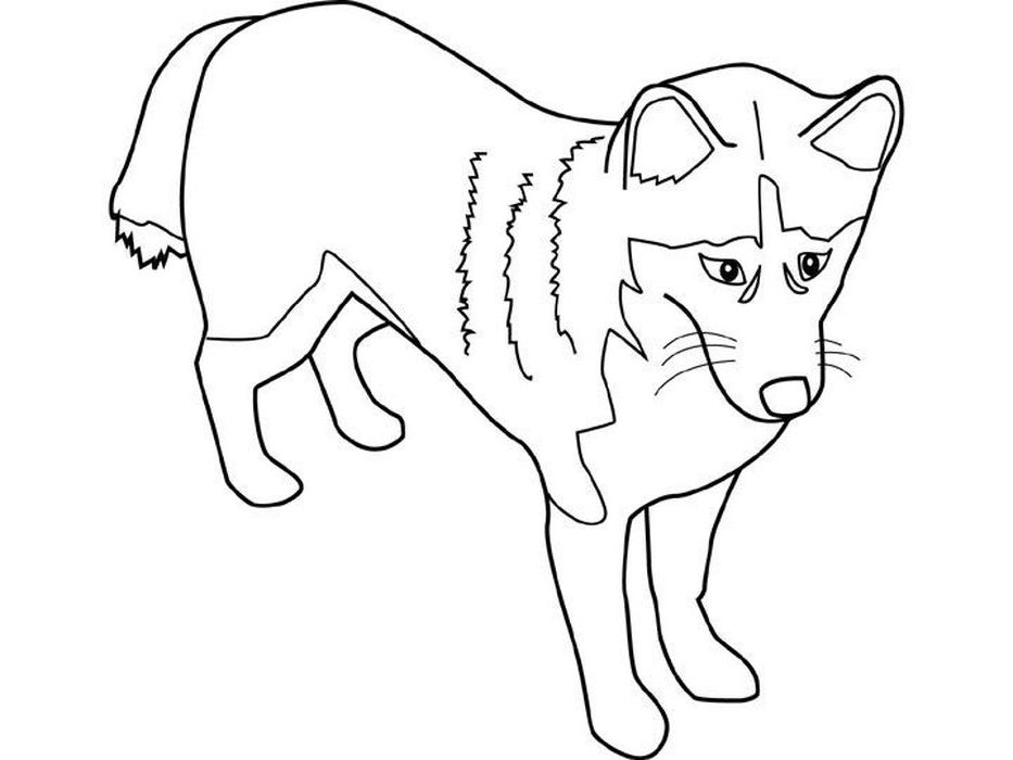 husky dog coloring pages husky coloring pages at getcoloringscom free printable dog coloring husky pages
