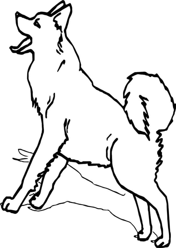 husky dog coloring pages husky coloring pages ideas coloring dog pages husky