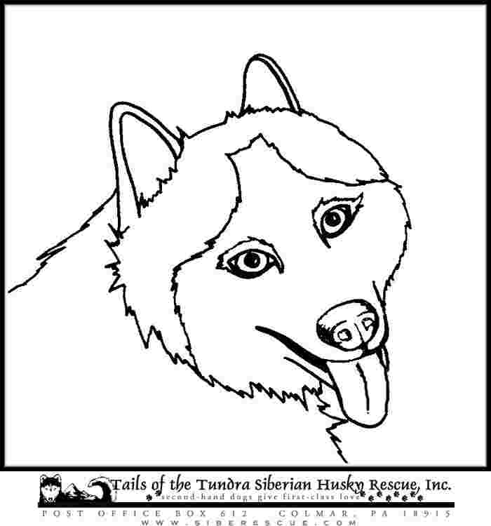 husky dog coloring pages husky mask coloring page woo jr kids activities coloring husky dog pages
