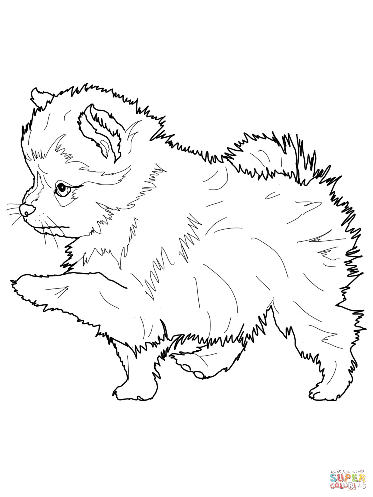 husky dog coloring pages husky puppy coloring pages at getcoloringscom free coloring pages husky dog