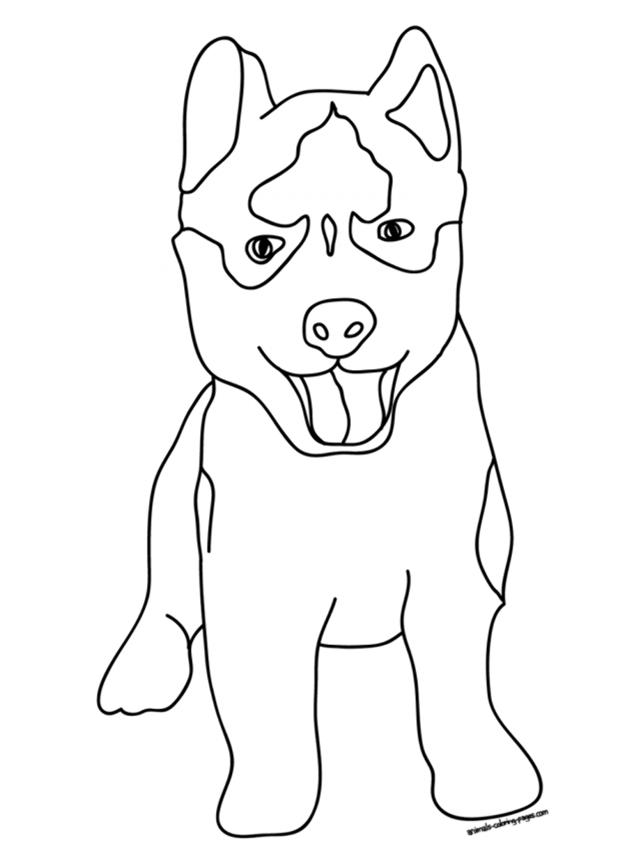 husky dog coloring pages husky puppy coloring pages puppy coloring pages free pages coloring husky dog