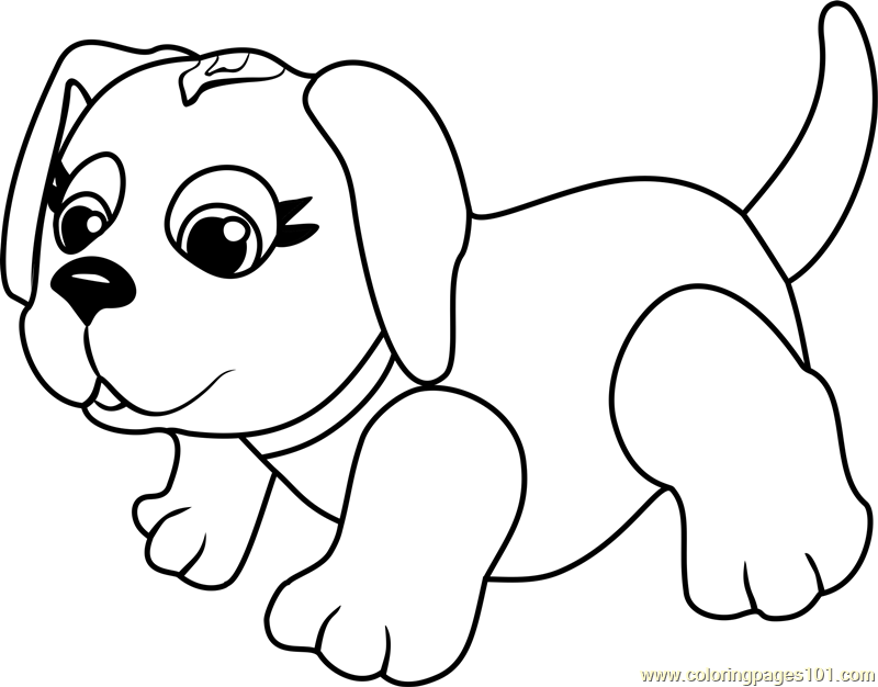 husky dog coloring pages puppy coloring pages in 2020 puppy coloring pages dog pages husky coloring dog
