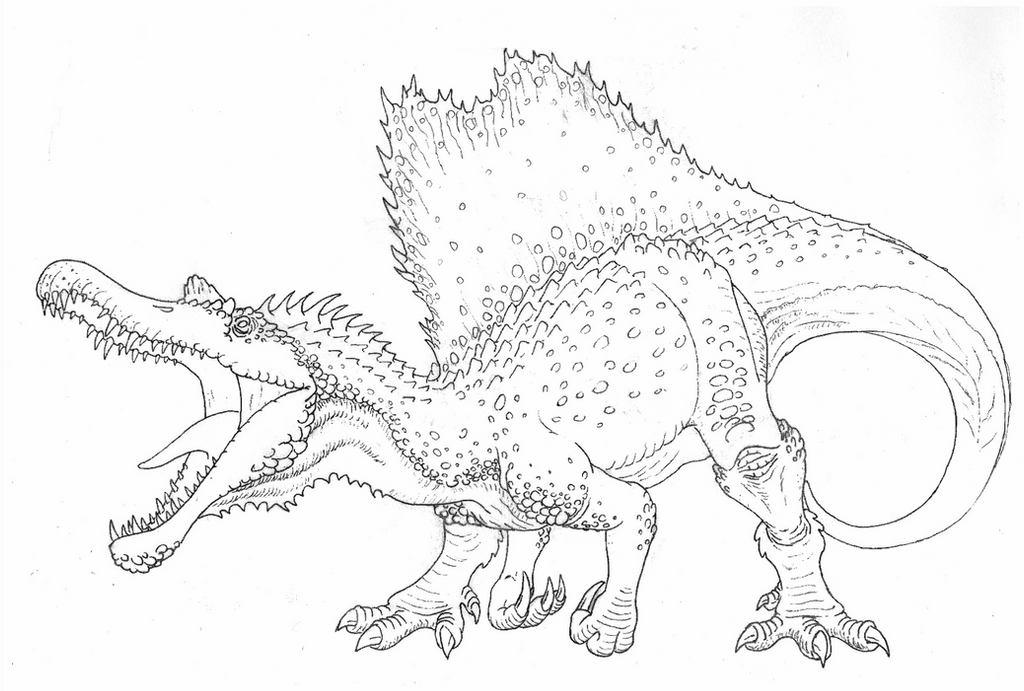 images spinosaurus spinosaurus clipart black and white 10 free cliparts images spinosaurus