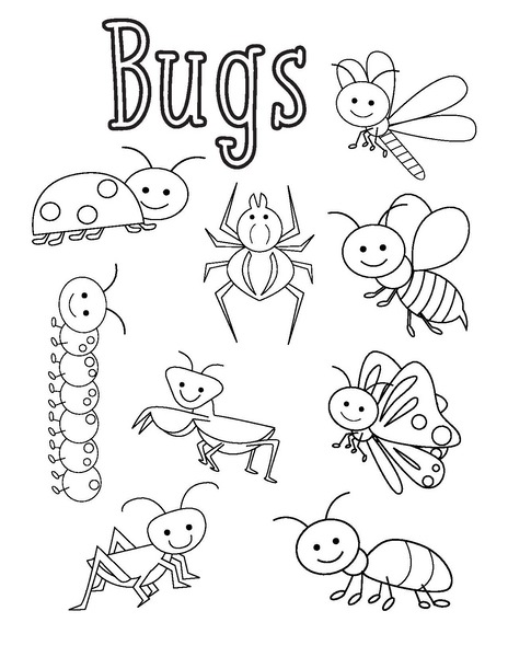 insect coloring sheets black and white insects clipart free image coloring insect sheets