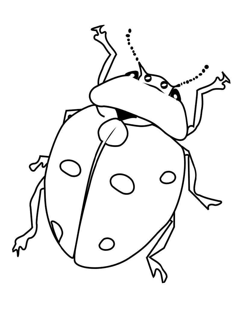 insect coloring sheets bugs coloring pages preschool at getcoloringscom free coloring insect sheets