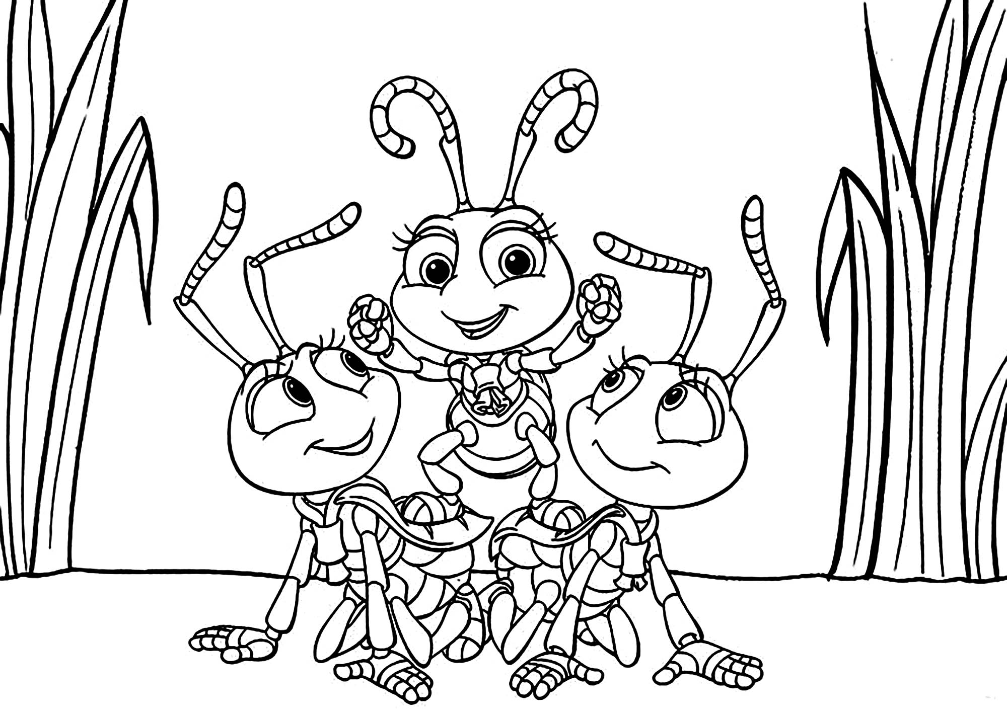 insect coloring sheets free printable bug coloring pages for kids insect coloring sheets