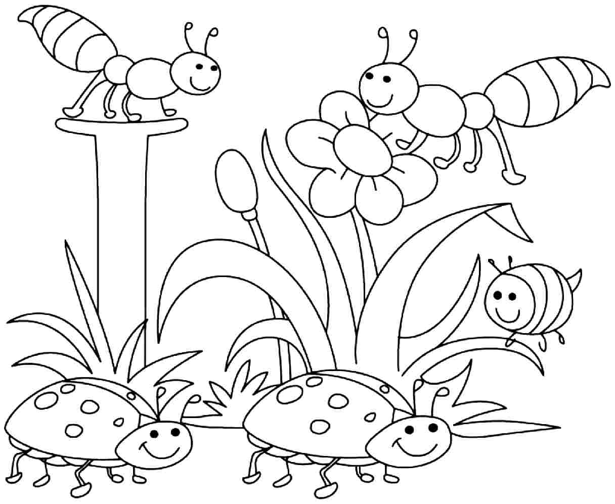 insect coloring sheets free printable bug coloring pages for kids sheets insect coloring 1 1