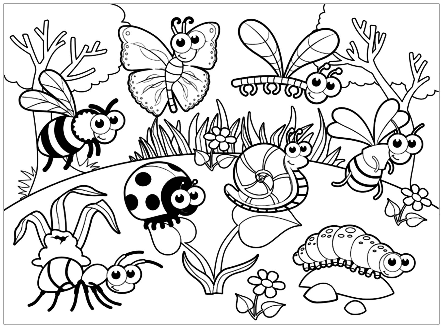 Insect coloring sheets