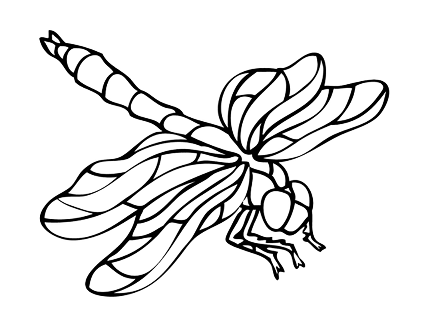 insect coloring sheets insects coloring pages coloring insect sheets