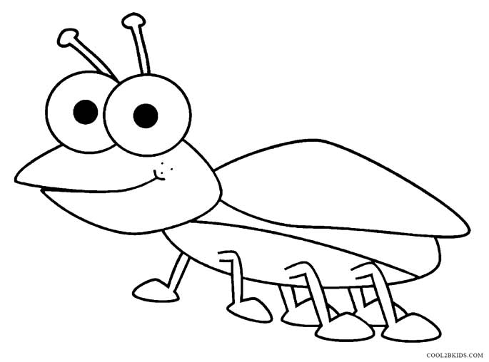 insect coloring sheets realistic insect coloring pages realistic coloring pages sheets coloring insect