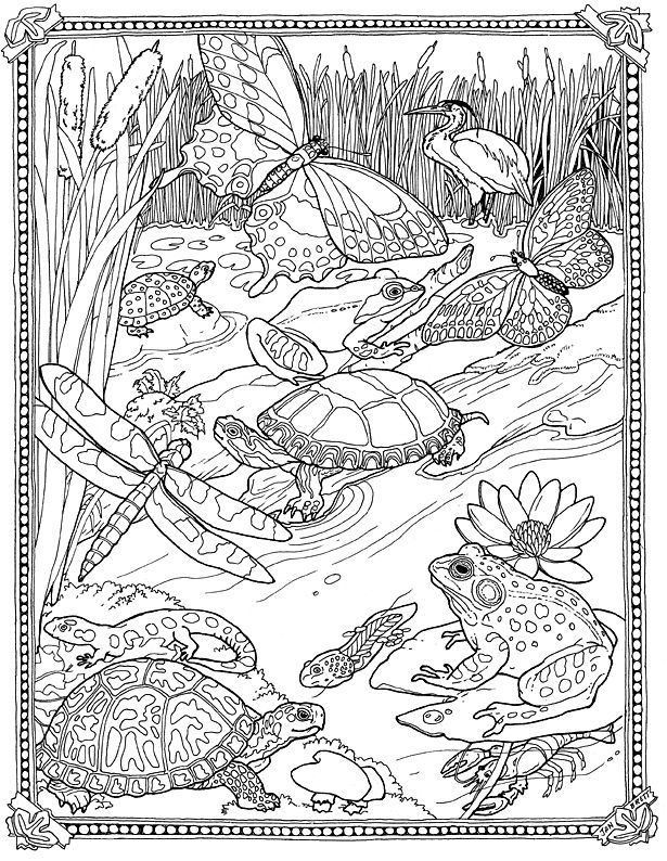 jan brett coloring pages jan brett coloring pages books 100 free and printable coloring pages jan brett