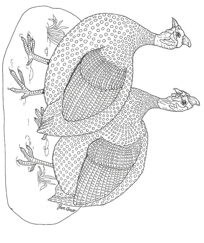 jan brett coloring pages jan brett coloring pages books 100 free and printable pages brett coloring jan