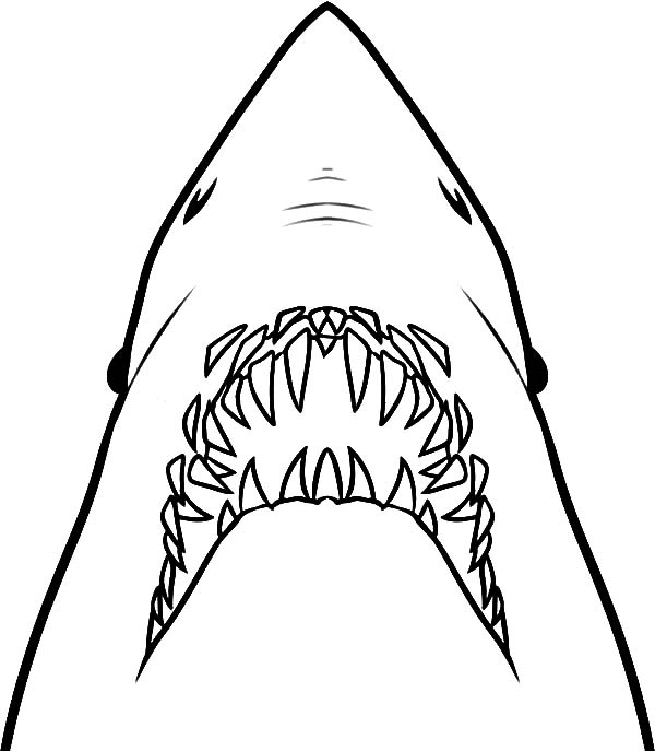 jaws coloring pages jaws drawing at getdrawings free download jaws coloring pages