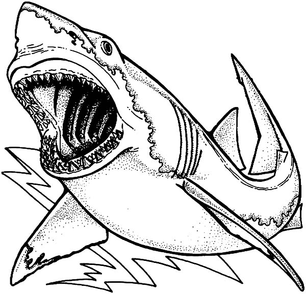 Jaws coloring pages