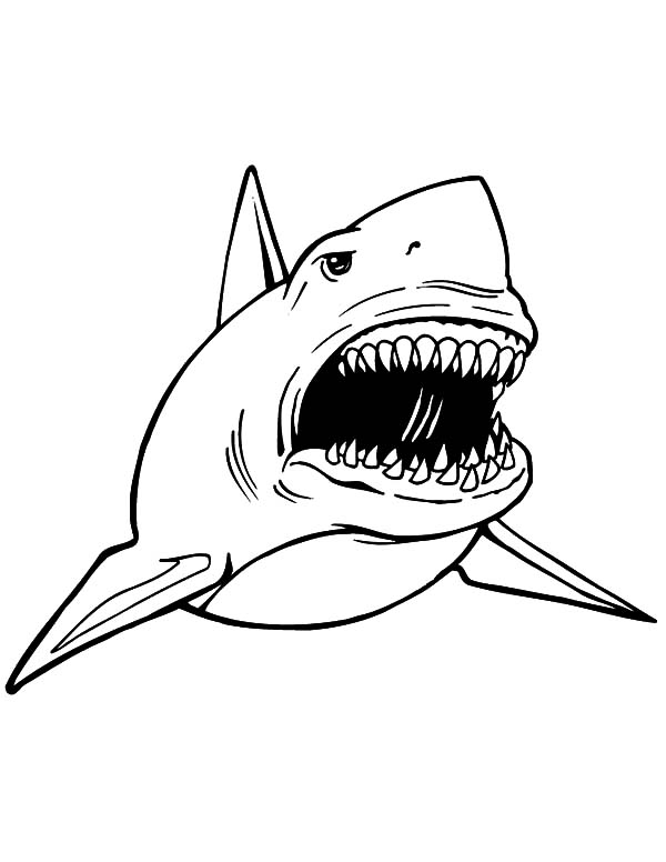 jaws coloring pages richmond illustration inc pages jaws coloring
