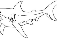 jaws coloring pages school of shark jaws coloring pages best place to color pages coloring jaws