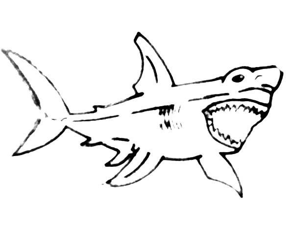 jaws coloring pages shark jaws adult coloring book by bengardnersboat on etsy coloring jaws pages