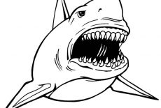 jaws coloring pages the chumline jaws the revenge coloring jaws pages