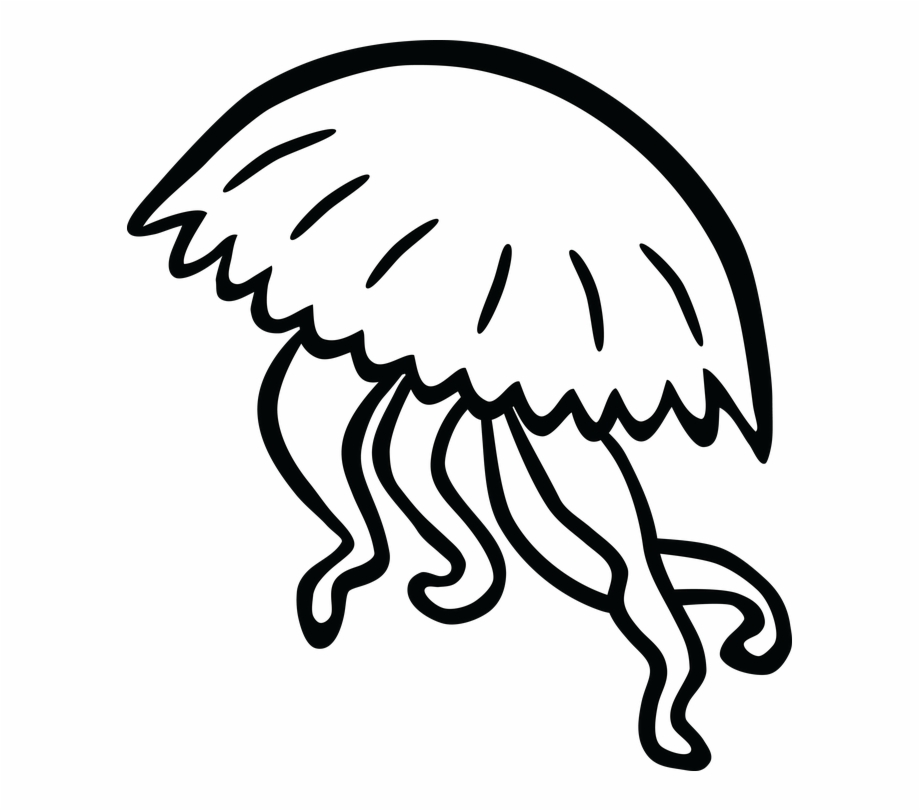 jelly fish drawings jellyfish tattoo drawing free download on clipartmag fish drawings jelly