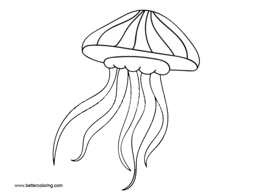 jelly fish drawings simple jellyfish drawing at paintingvalleycom explore drawings jelly fish