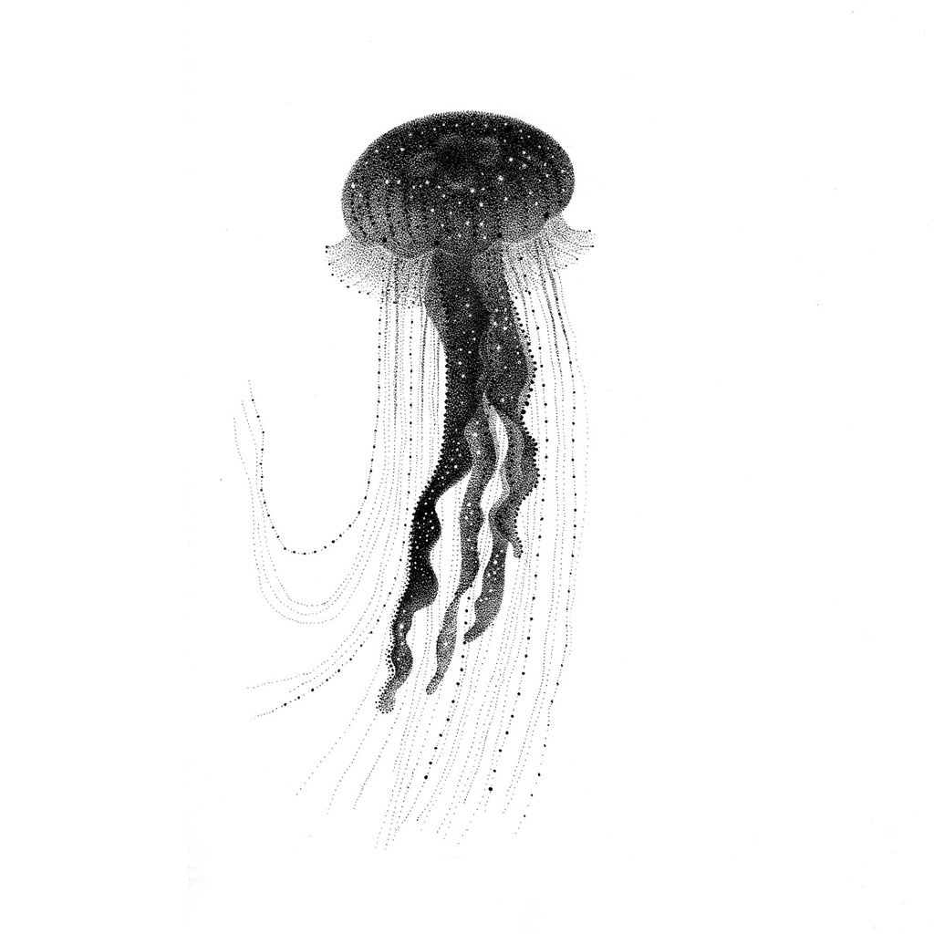 jelly fish sketch jellyfish drawing by lillian palmbach saatchi art jelly fish sketch