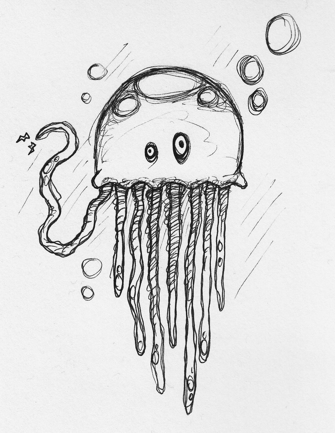 jelly fish sketch jellyfish tattoo drawing free download on clipartmag fish sketch jelly