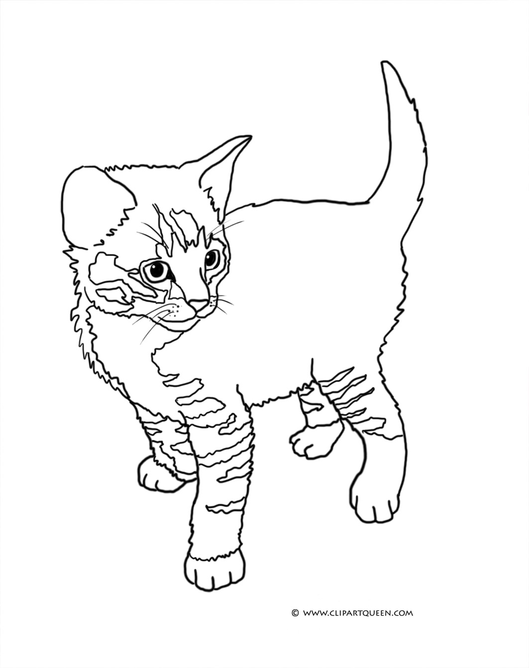 kitten color page 30 free printable cat coloring pages color page kitten