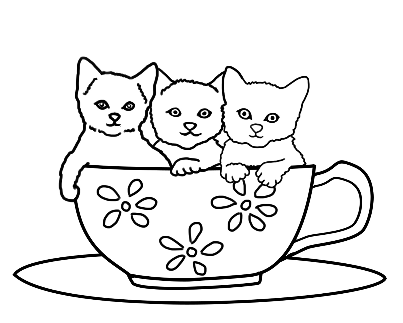 kitten color page cat coloring pages page color kitten