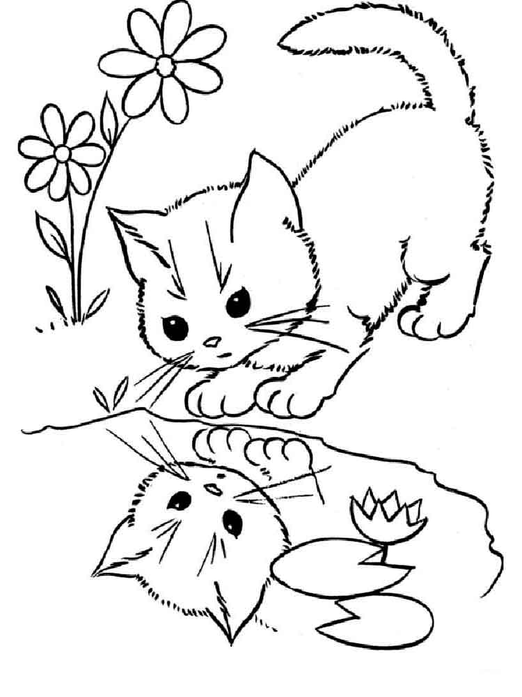 kitten color page cute cat coloring pages coloring home color page kitten
