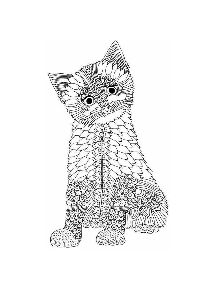 kitten color pages cat coloring pages learn to coloring color kitten pages