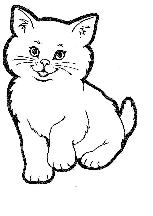 kitten color pages coloring pages for kids cat coloring pages for kids kitten pages color