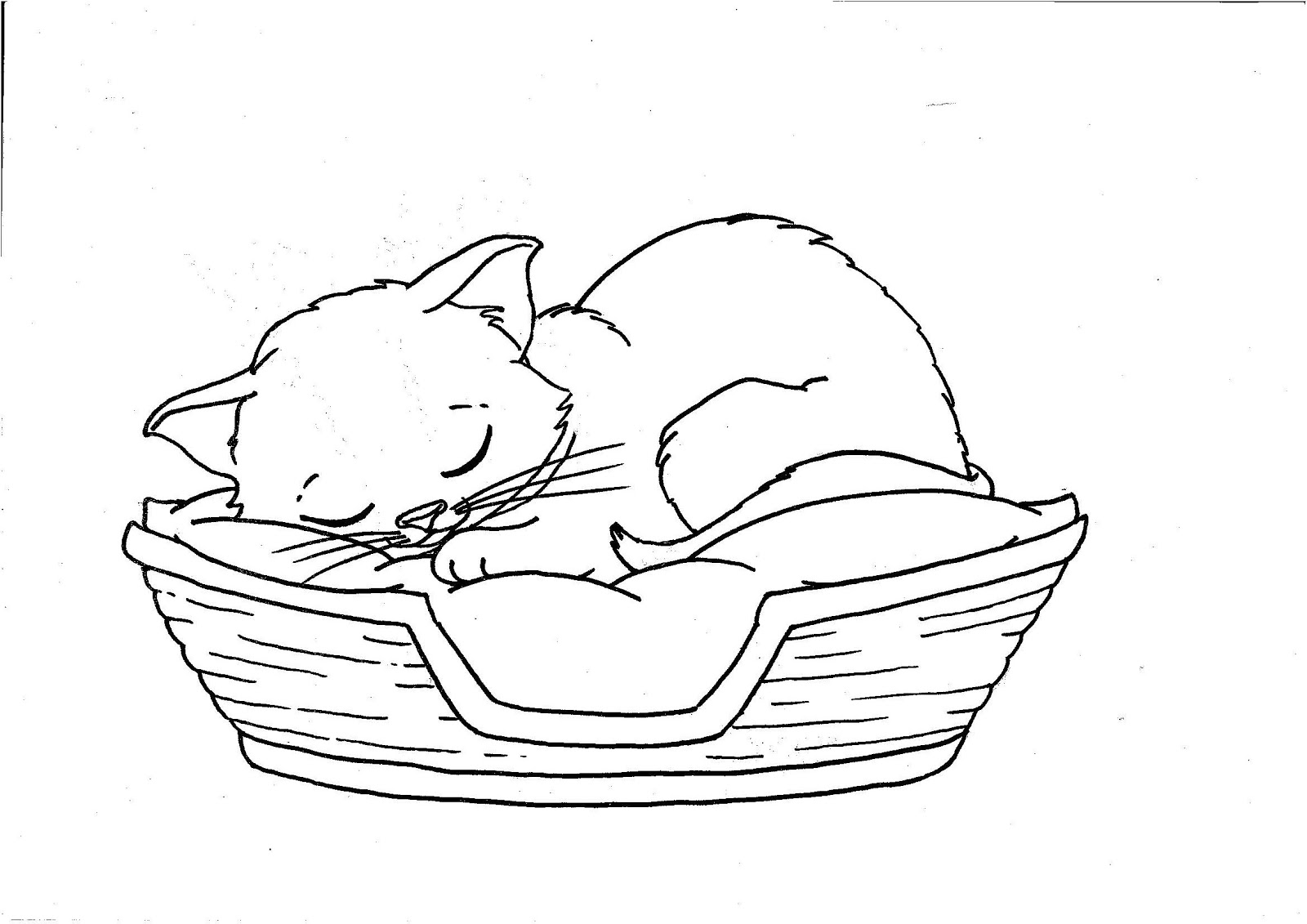 kittens coloring pages to print coloring pages cats and kittens coloring pages free and print coloring kittens to pages