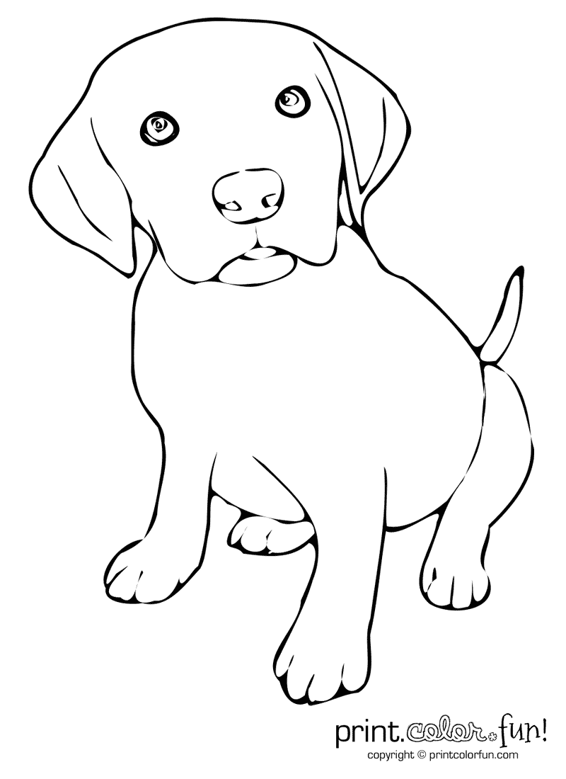 labrador colouring pages coloring page lab coloring page dog coloring page etsy labrador colouring pages